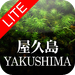 Yakushima Lite: A Picture Tour of the Forest of Souls